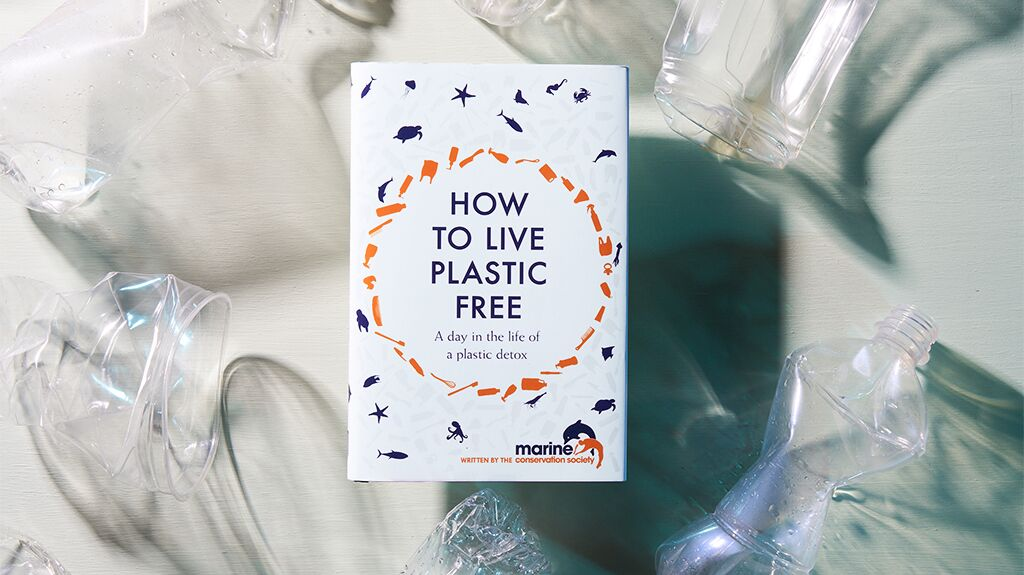 Our Go-To Guide to Living Plastic Free